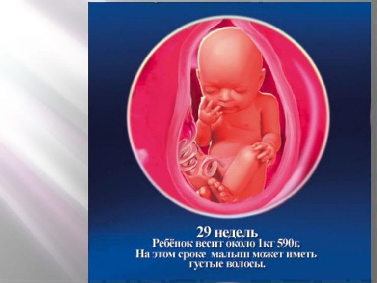 30 недели беременности что происходит с малышом и мамой