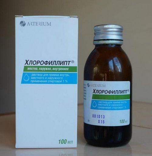Хлорофиллипт: инструкция по применению, цена, отзывы, аналоги