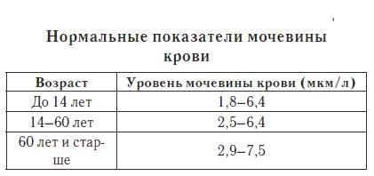 Норма мочивины в крови у женщин: таблица по возрасту, уровень мочивины в крови норма после 50 лет